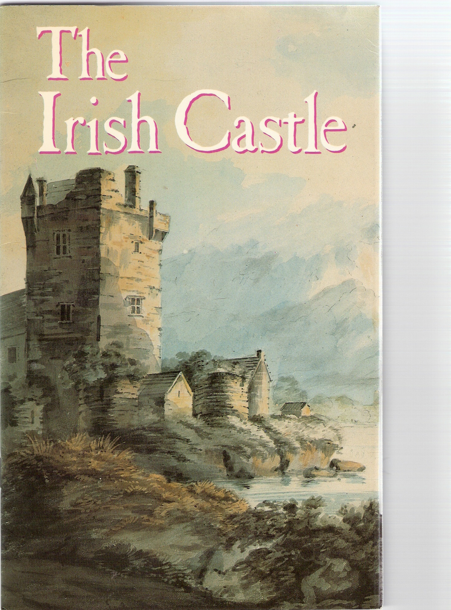 Image for The Irish Castle.The Irish Heritage Series :49